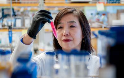Dr. Chen lab