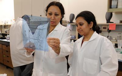 Dr. Raman lab