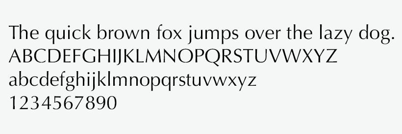 Typography | NEOMED