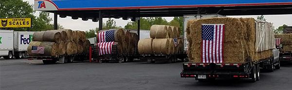 Semi trailers hauling hay