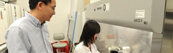 Researcher Yanqiao Zhang, M.D.