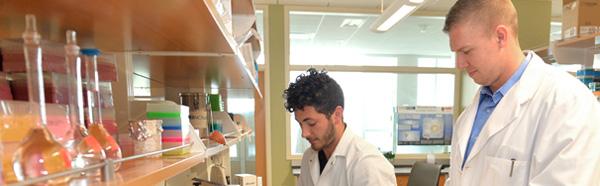 Daniel DelloStritto / Ian Bratz, Ph.D.