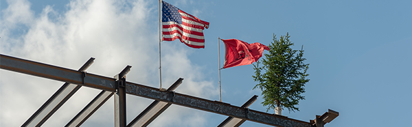 flag and tree upon steel beam