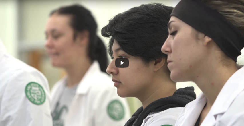 The Center for Innovations in Medical Professions video